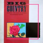 Big Country - Where The Rose Is Sown Extended Remix - (disc VGC)